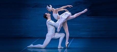 More Info for Neuer Termin: St. Petersburg Festival Ballet - Schwanensee