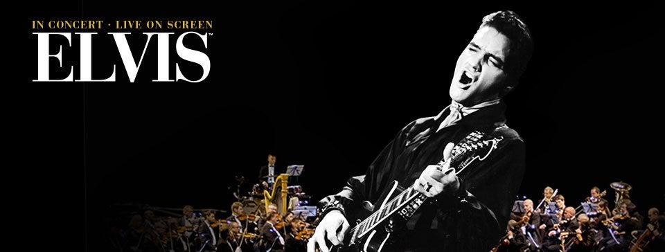 Elvis_WS_960x364px_01_19.jpg