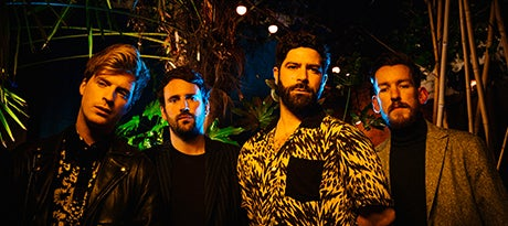 More Info for Foals