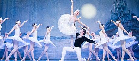 More Info for New date: St. Petersburg Festival Ballet - Schwanensee